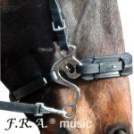 FRA music