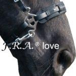Hackamore Love rvs