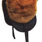 macon bruin